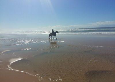 beach-rides
