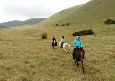 grasslands-rides