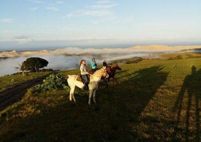 horseback-riding-trails